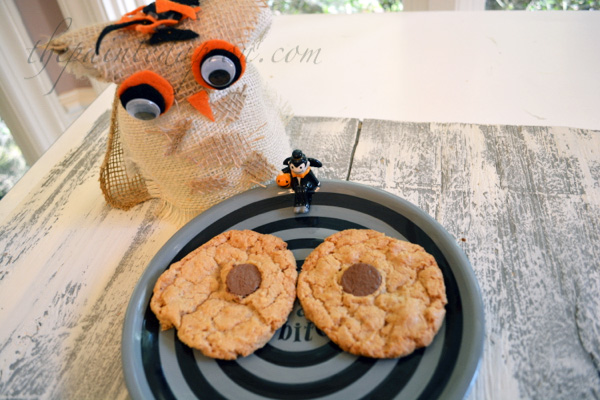 spooky owl eye cookies