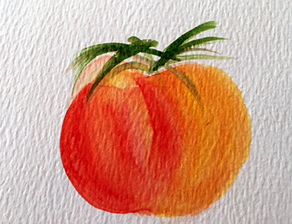 watercolor tomato sketch