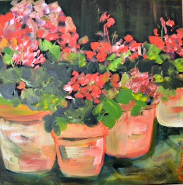 terra-cotta-geraniums