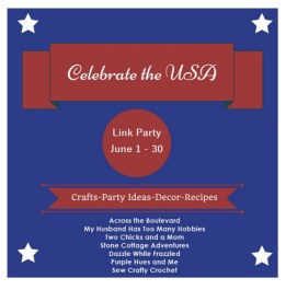 celebrate USA party
