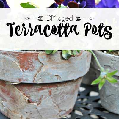 How to age your terracotta pots