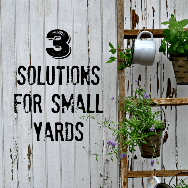 3 Solutions for Small Yards