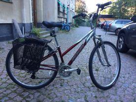 basket bikeIMG_6140