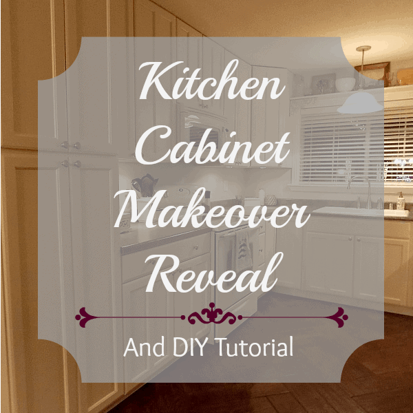 kitchen cabinet makeover reveal - the palette muse