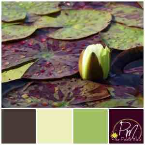 Water Lily Color Palette