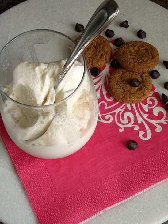 Dairy-Free Vanilla Ice Cream