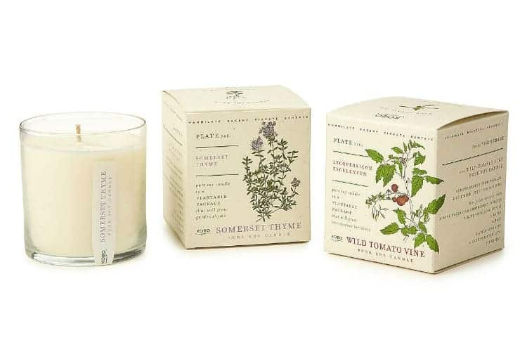Plant Package Candles