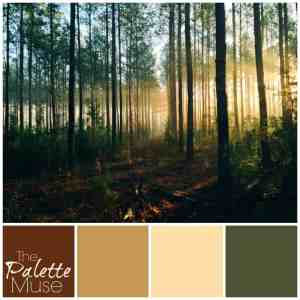 Misty Forest Palette