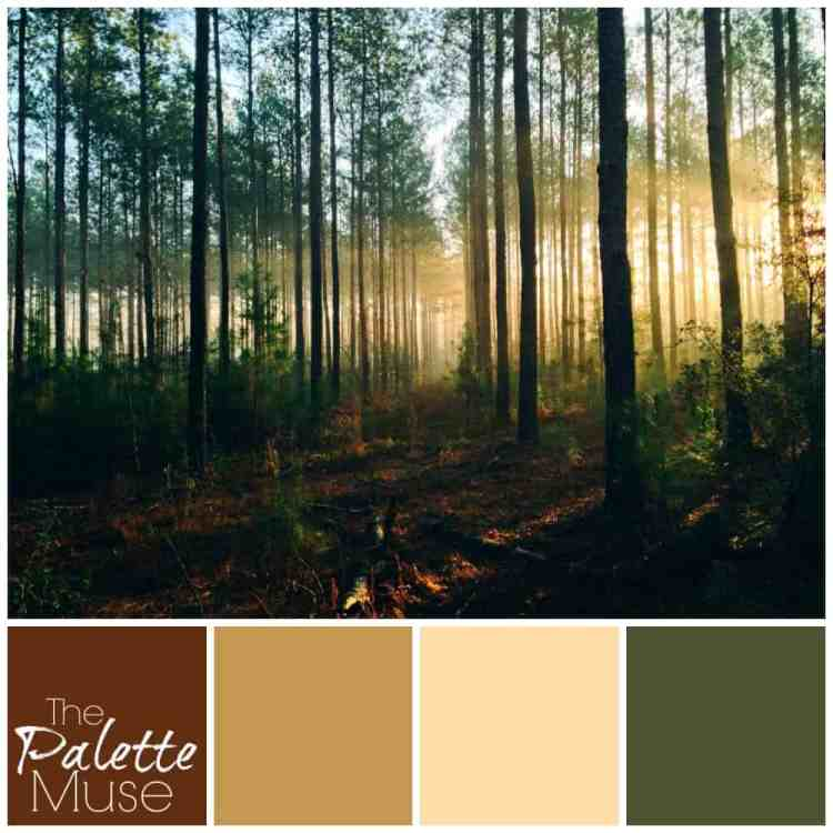 misty-forest-palette