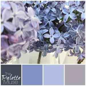 Lilac Palette
