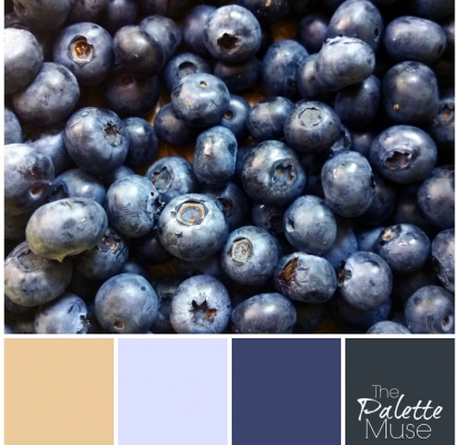 Blueberry-Palette