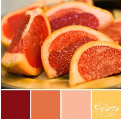 Grapefruit Palette