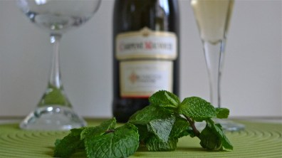 Elderflower syrup, Prosecco and a glass behind fresh mint leaves | ©Tom Palladio Images