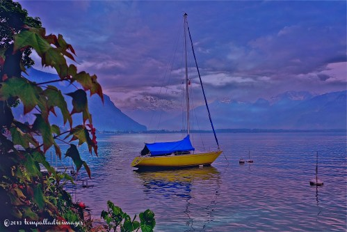 Mellow Yellow on Lac Leman | ©Tom Palladio Images
