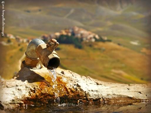 Carefree in Castelluccio di Norcia, Italy | ©Tom Palladio Images