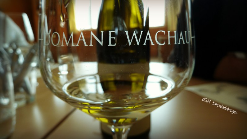 Bohemian Rhapsody: A Warrior, Wine and Wien   ©Tom Palladio Images