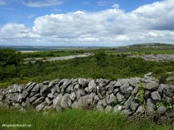 Burren5_WM
