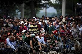 """EU Commissioner of Immigration Italy migrant situation is """"untenable"""""""