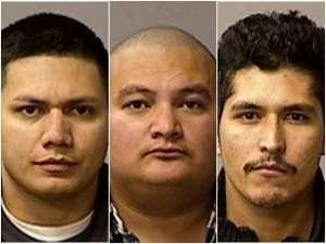 Seven aliens arrested for helping alien cop-killer evade arrest