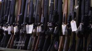 NY Times columnist: People buying guns because of Coronavirus will lead to more deaths