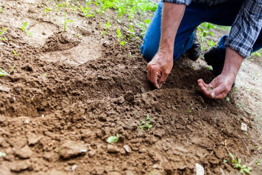 sertifikasi-ISPO-petani