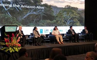 Good Growth Conference Praises Indonesia for Progress in Battling Deforestation