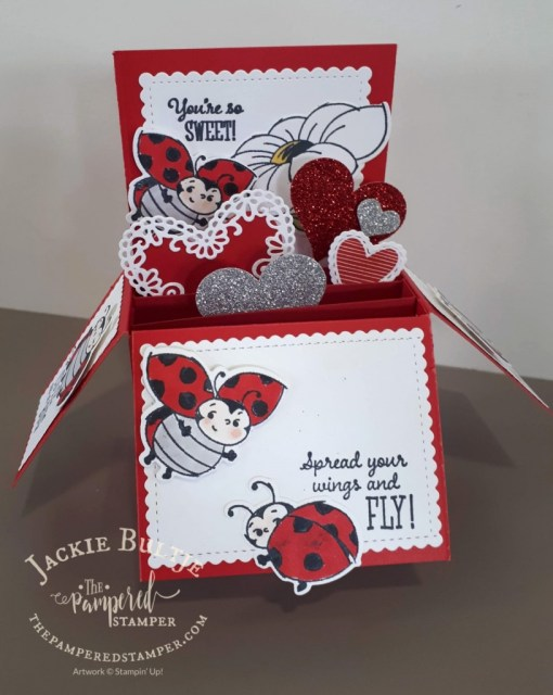 Little Ladybug box card