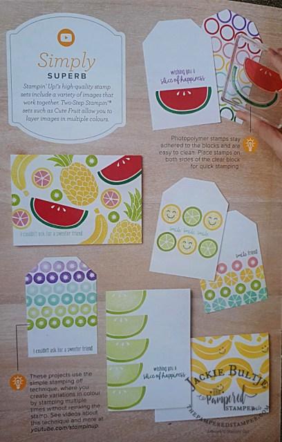 Beginner Brochure Cute Fruit