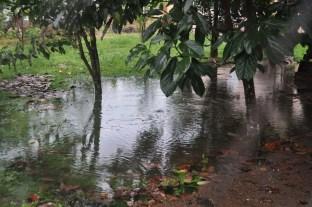 downpour15