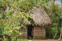 We saw some very basic housing, like this place made of thatched roof and walls.