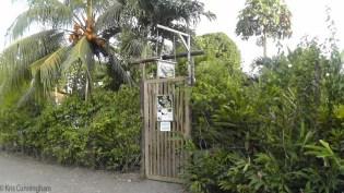 The front door, a hint of the garden that lies behind