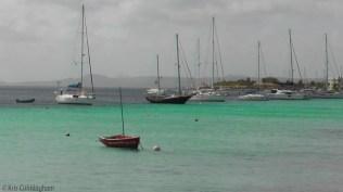 More sailboats, lots of them!
