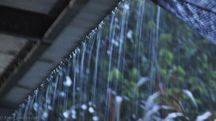 Rain water is soon pouring off the roof.