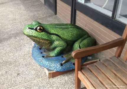 There are frogs all over town. I especially like this one.