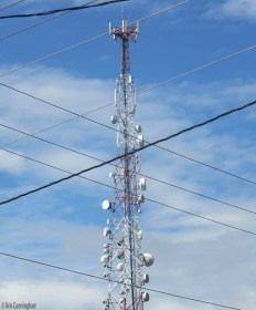 There is no shortage of these cell towers around the city.