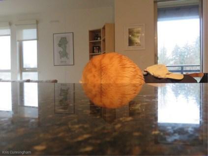 It is a cat ball!