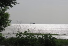 The sun shines off the water as a ferry makes its way to the mainland.