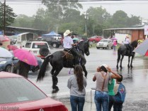 Then, some wet but very beautiful horses came along.