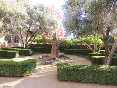 There is a beautiful statue of St Francis near the entrance to the winery.