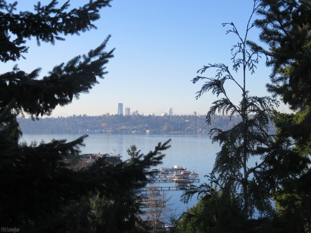 Another pretty view of Seattle