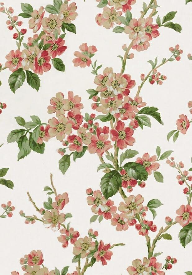Blossom copy