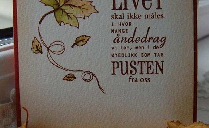 Line Øverby – CAS (2)