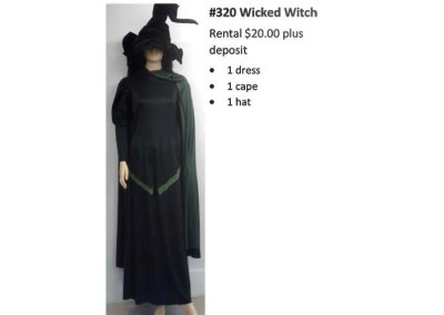 320 Wicked Witch