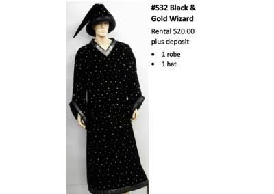 532 Black & Gold Wizard
