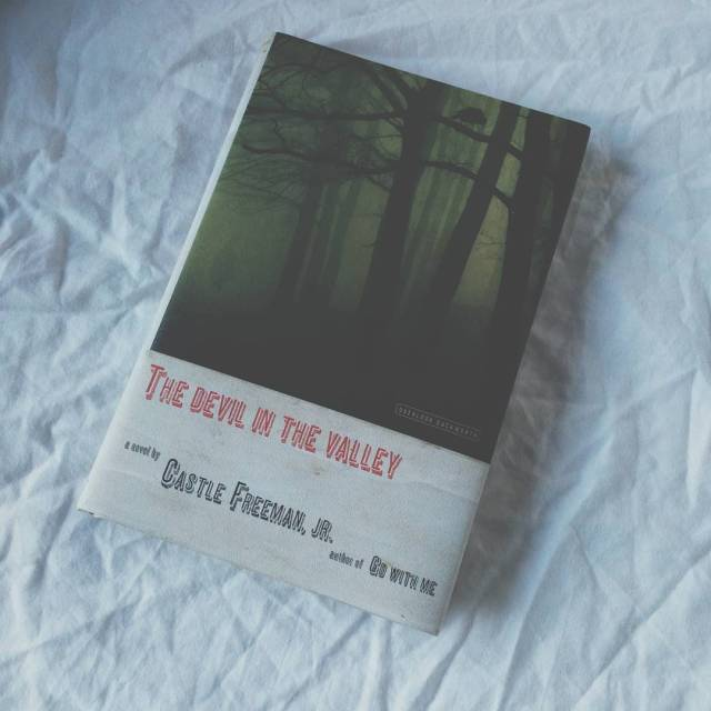 Cover of The Devil In The Valley by Castle Freeman Jr.