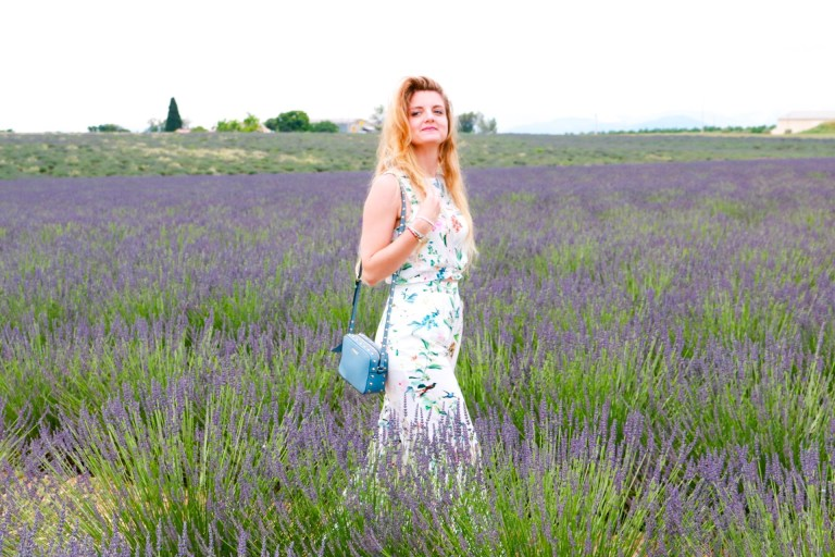 Valensole Fifty Shades of Lilac