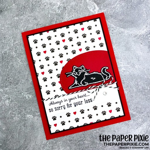 This is a handmade card stamped with the Pampered Pets Stampin' Up! stamp bundle and the sentiment says always in your heart...so sorry for your loss.