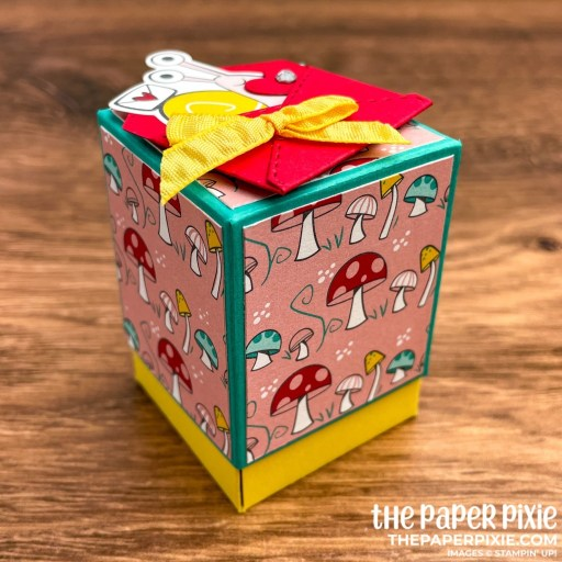 This is a handmade Explosion Box made with the Snail Mail Stampin' Up! product suite and the sentiment says you snailed it.