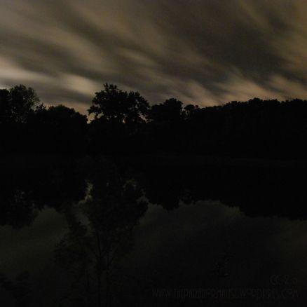 pond shades of gray