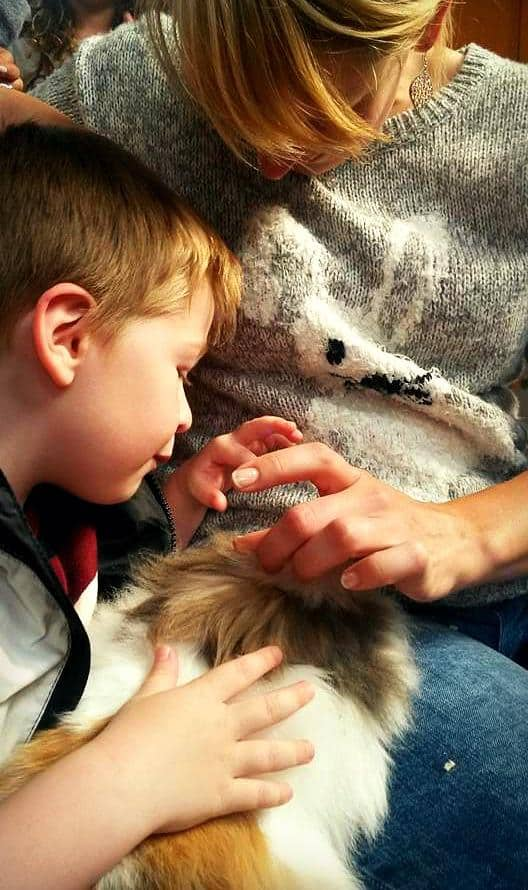 Blonde woman and boy stroking a very fluffy orange bunny